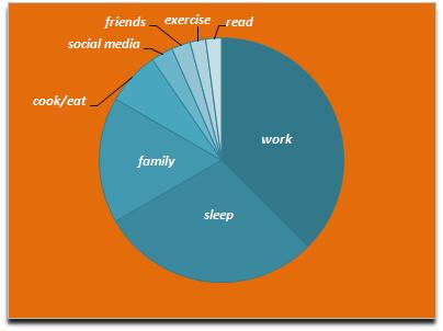 Pie chart reflecting one person's average day