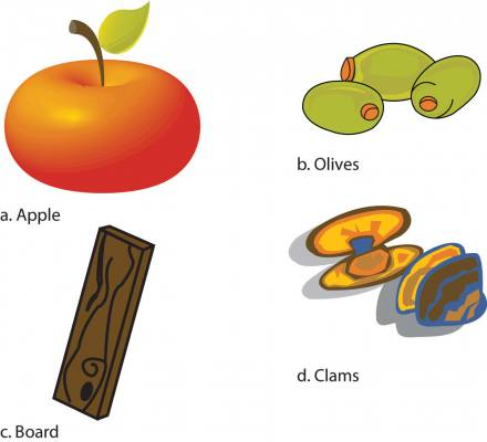 drawings of a. apple, b. olives, c. board, and d. clams