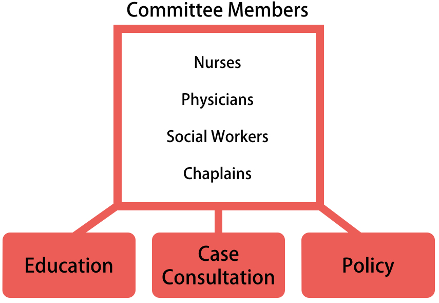 A diagram shows the roles through which medical ethics committees influence decisions