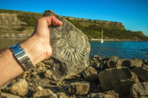 Image shows a man's hand holding a fossil outside near water.