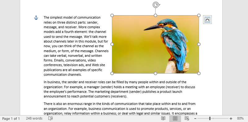 A Microsoft Word document is open with text on it. On the document an image of a colorful kingfisher is visible. The text has been wrapped around the image forcing the image to go to the right of the document.