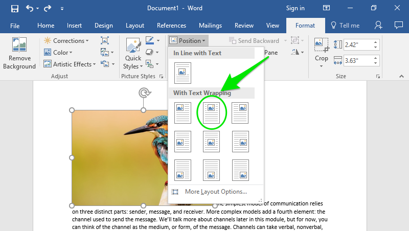 A Microsoft Word document is open with text on it. On the document an image of a colorful kingfisher is visible. Under the format tab on the ribbon menu the option to position the image has been selected resulting in a new dropdown menu. A green arrow is pointing at a green oval which is highlighting which text wrap option has been selected.