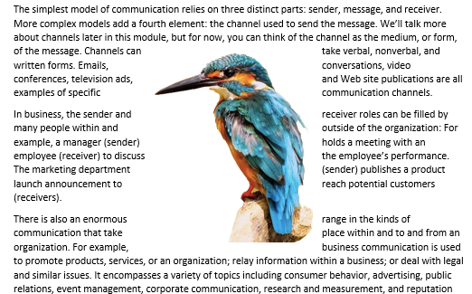 "A Microsoft Word document is open with text on it. On the document an image of a colorful kingfisher is visible. This is showing an image with ""Square Wrap Text""."