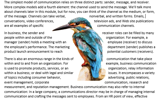 "A Microsoft Word document is open with text on it. On the document an image of a colorful kingfisher is visible. This is showing an image with ""Tight Text Wrap""."