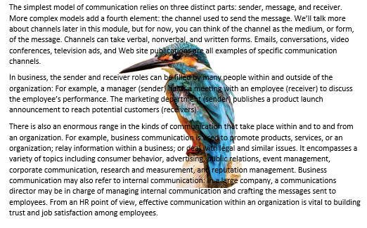 "A Microsoft Word document is open with text on it. On the document an image of a colorful kingfisher is visible. This is showing an image with ""Behind Text"" being applied."