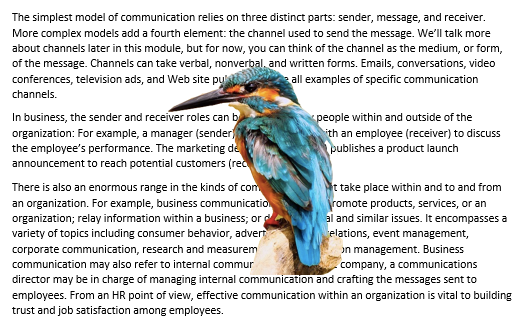 "A Microsoft Word document is open with text on it. On the document an image of a colorful kingfisher is visible. This is showing an image with ""In Front of Text"" wrapping."