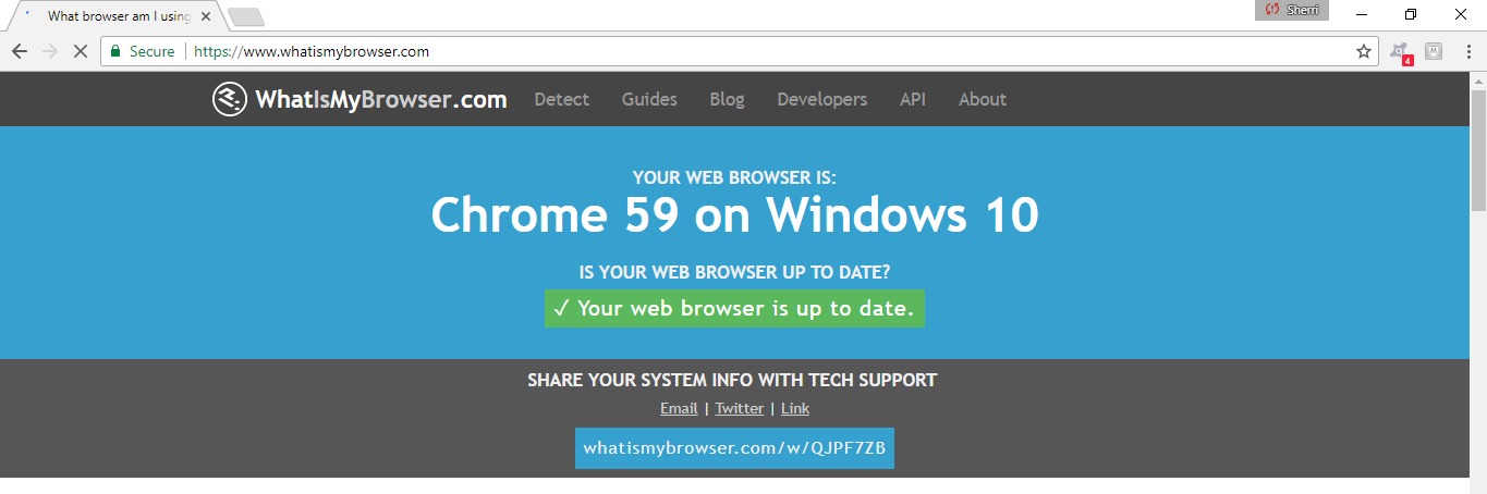 A website that informs you of whether or not your browser is configured appropriately.