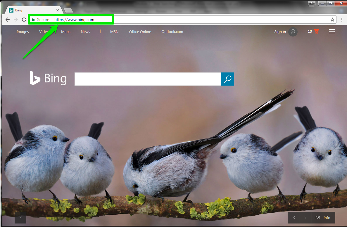 The Bing home URL is in the address bar. There is a green arrow pointing at the address bar which is highlighted by a green box.