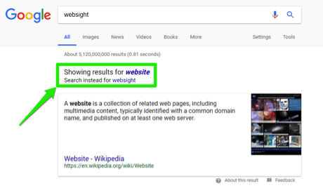"A google search has been entered for, websight. There is a green box surrounding the, ""showing results for"" section of the site."