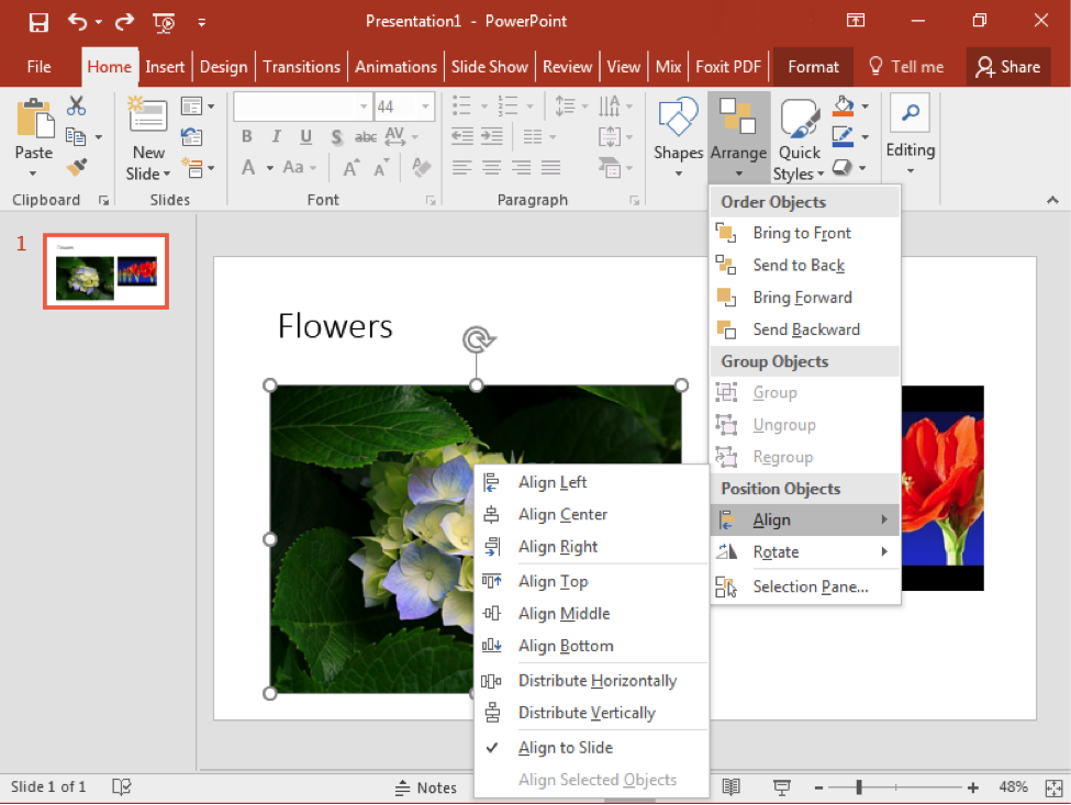 A Microsoft Powerpoint is open with a video on the first and only slide there is also an image of a flower to the left of the video. A dropdown menu from the arrange feature has opened. In the arrange dropdown menu, a new dropdown menu has appeared from the align feature.