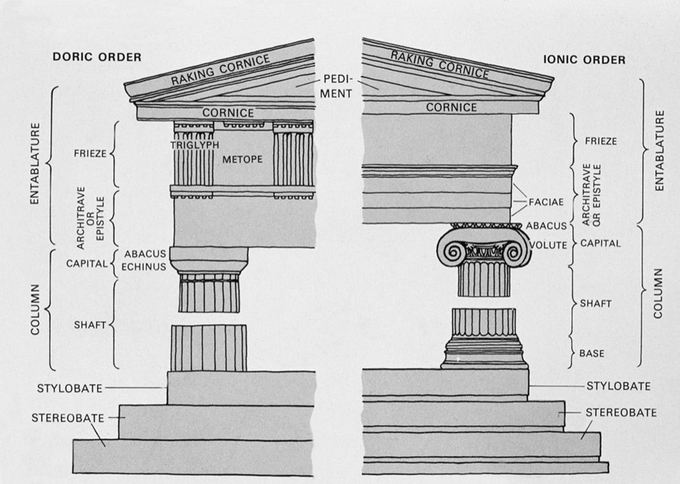 This is a drawing that illustrates the stylistic differences between the Doric and Ionic order.