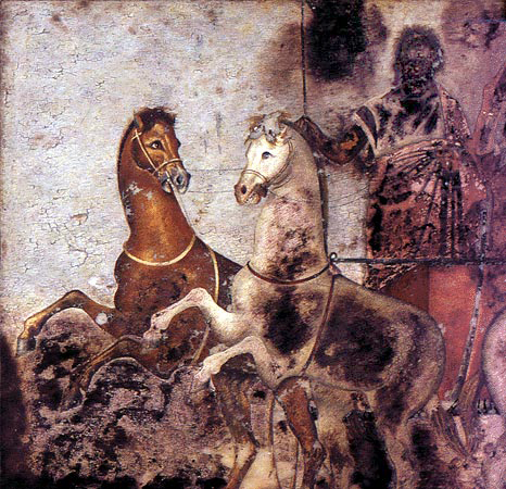 This is a photo of a Man on a Chariot. The chariot is pulled by a brown horse and a white horse. Their front feet are raised as if they are mid-gallop. The chariot driver is blackened by damage to the poorly preserved painting. He wears draped garments and appears to have a beard. He holds a whip or reins.