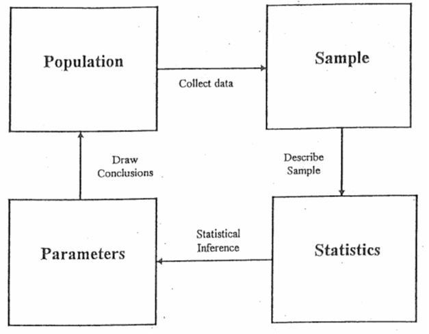 Chapter 1: Descriptive Statistics and the Normal