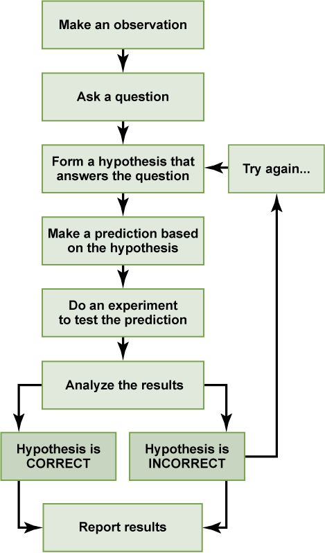 the scientific method  boundless psychology the basic principles of the scientific method
