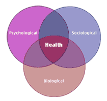 Introduction to Health Psychology | Boundless Psychology