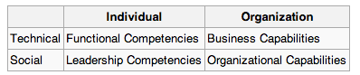 A table that shows how individuals have functional and leadership competencies, while organizations have business and organizational capabilities.