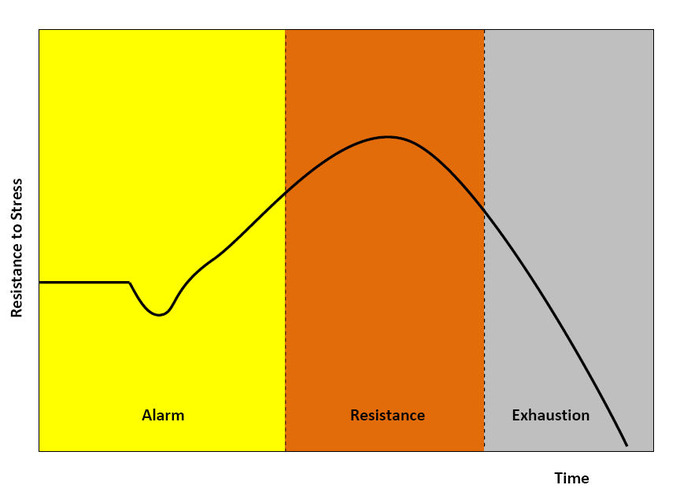 This is a diagram of general adaptation syndrome. It shows resistance to stress over time, with the alarm stage building up resistance until it reaches the resistance stage. Resistance continues to build up and peak in the resistance stage, until it declines into the exhaustion stage.