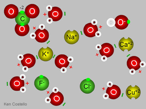 This is a diagram of ions in a solution.