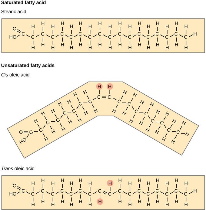 Are Saturated Fatty Acids Liquid At Room Temperature