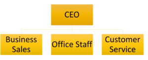 An example of a flat organizational structure, which only has two levels of employees: the owner/CEO at the top and all other types of employees below.