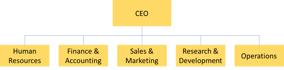 Organizational chart with the CEO at the top and then different departments in the level below