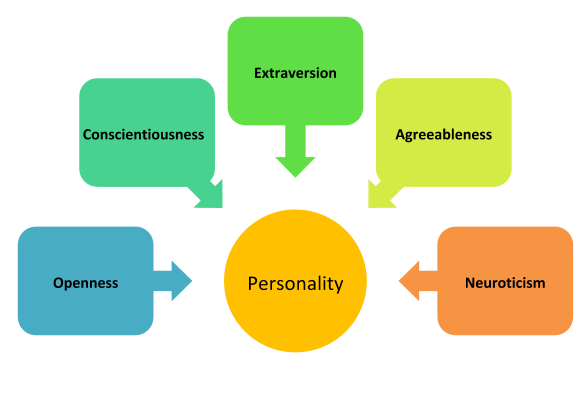 A circle at the center, with the big five personality traits of openness, conscientiousness, extraversion, agreeableness, and neuroticism surrounding it in their own boxes. Each box has an arrow pointing to personality.