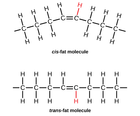 Two images show the molecular structure of a fat in the cis-conformation and the trans-conformation.