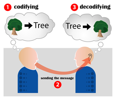 "A picture that shows the process of encoding and decoding. The speaker encodes the message (thinks of a tree). When he says ""tree"" he sends the message to the other person. The listener hears the message and decodes it (hears the word ""tree"" and then has a visual of a tree)."