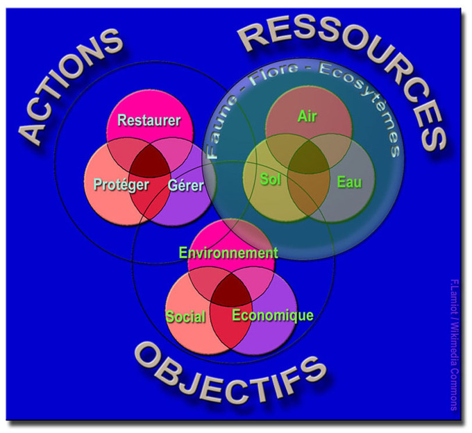 A graphic that uses colors to show the interrelationships between main areas of sustainable development.