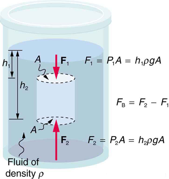 Gravitational Force Fluid Flow: Archimedes' Principle