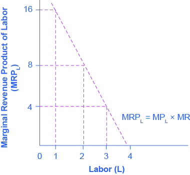 Graph showing marginal revenue product of labor on the y-axis and labor on the x-axis. The line slopes downward, passing through (1, 16) and (3,4)