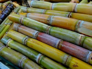 Image of a pile of cut sugar cane. Yellow, green, and red sugar cane stalks stacked on top of each other.