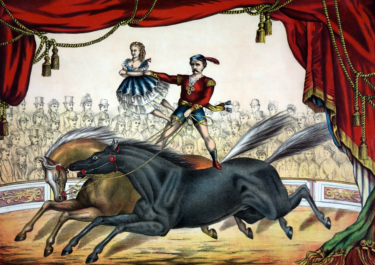 Old drawing of a circus acrobat riding with one leg on one horse and another leg on another.