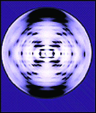 An image shows a circular illustration with rings of dots that are blurred together.