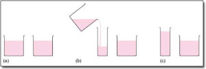 beakers of different dimensions showing beakers with various dimensions.