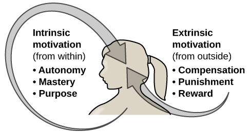 """An illustration shows a person's upper torso. An arrow on the left begins at the person's chest and curves around to point inside the head; inside the curve of the arrow are the words """"intrinsic motivation (from within)"""" and three bullet points: """"autonomy,"""" """"mastery,"""" """"purpose."""" An arrow on the right begins in empty space and curves to a point inside the head. Above the arrow are the words """"extrinsic motivation (from outside)"""" and three bullet points: """"compensation,"""" """"punishment,"""" and """"reward."""""""