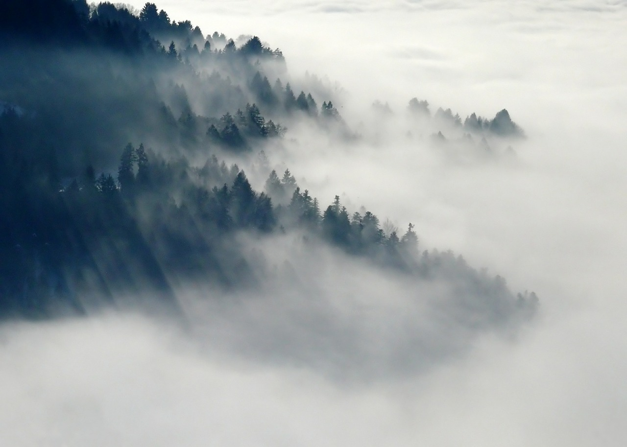 Fog over the base of a mountain.