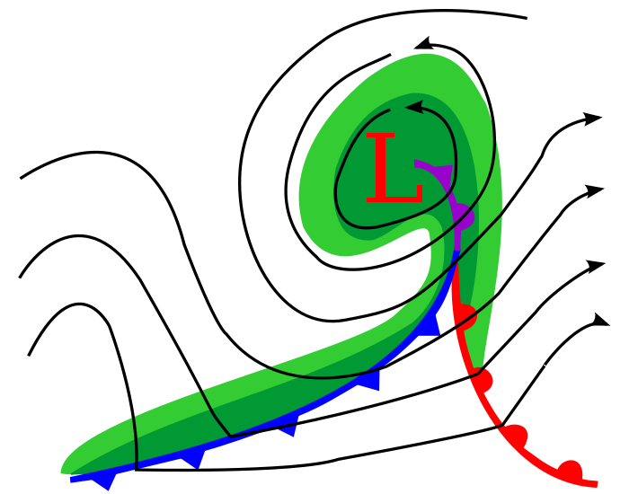Diagram of a cyclone in the early stages of occlusion in the Northern Hemisphere