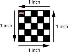 A 5 square by 5 square checkerboard is shown with each side labeled 1 inch. An image of an ant is shown on the top left square.