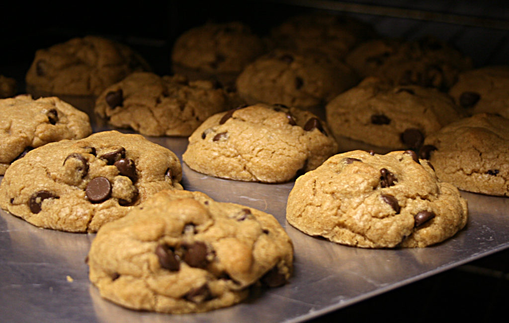 Fresh-baked chocolate chip cookies on a cookie sheet