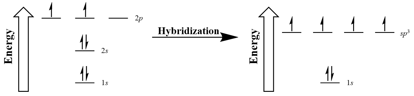 Figure #.#. Hybridization of carbon to generate sp3 orbitals.