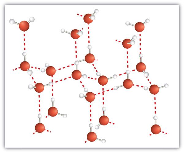 Molecular Solid