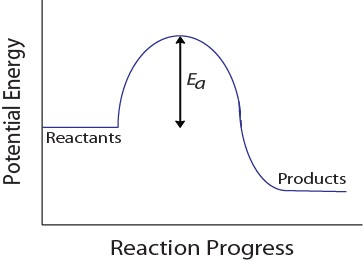 Figure 17.1-4. Potential energy diagram for a hypothetical reaction.