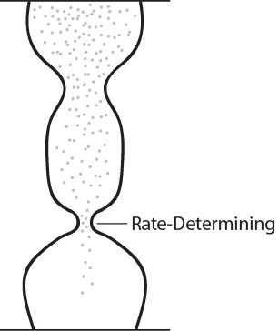 Figure 17.6.2. Double hourglass with one opening smaller than the other which determines rate.