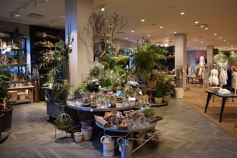 Photograph of an Anthroplogie store. The store displays plants and clothes. Each display is spread out across the store.