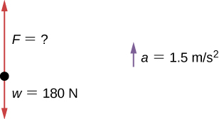 Figure shows a free-body diagram with vector w equal to 180 newtons pointing downwards and vector F of unknown magnitude pointing upwards. Acceleration a is equal to 1.5 meters per second squared.