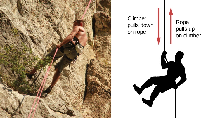 A photograph of a mountain climber is shown on the left. A figure of a mountain climber is shown on the right. An arrow pointing down is labeled climber pulls down on rope. An arrow pointing up is labeled rope pulls up on climber.