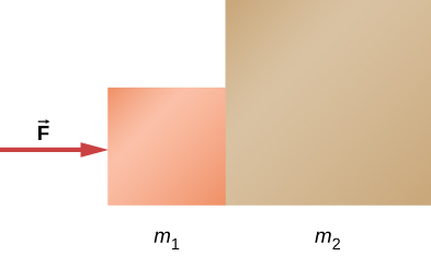 Two squares are shown in contact with each other. The left one is smaller and is labeled m1. The right one is bigger and is labeled m2. An arrow pointing right towards m1 is labeled F.