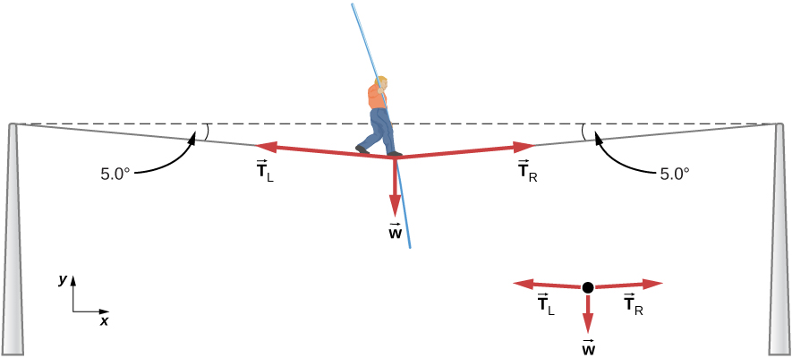 Figure shows a man at the centre of a tightrope which is supported by two poles. The rope sags under his weight and makes an angle of 5 degrees with the horizontal at each pole. Arrows labeled TL and TR point roughly to the left and right respectively and are parallel to the rope. Arrow labeled w points straight down from the man. These three arrows are also shown in a free body diagram.