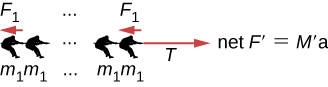 Figure shows a team of people each with mass m1 pulling on a rope towards the left with force F1. An arrow parallel to the rope, pointing right is labeled T. Net F prime is equal to M prime a.